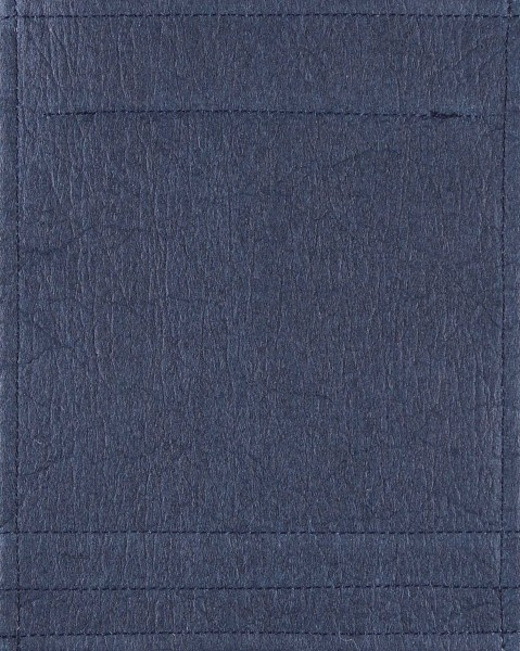 Wechselklappe für Tasche/Rucksack - Ananas - marine- Größe S