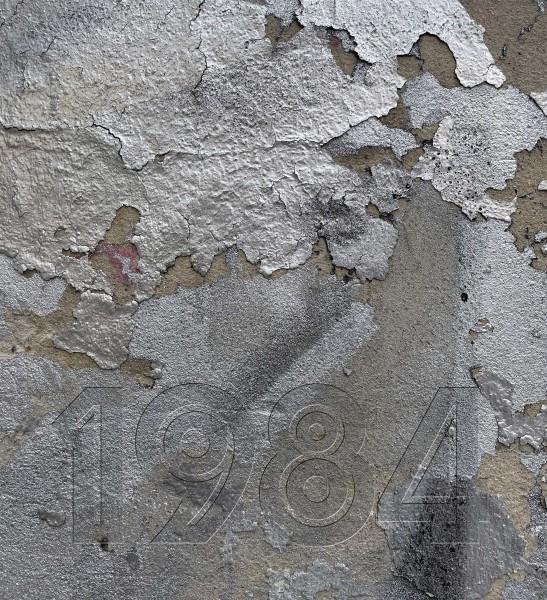 Wechseldeckel für Umhängetasche - 1884 – grau/silber - Größe M