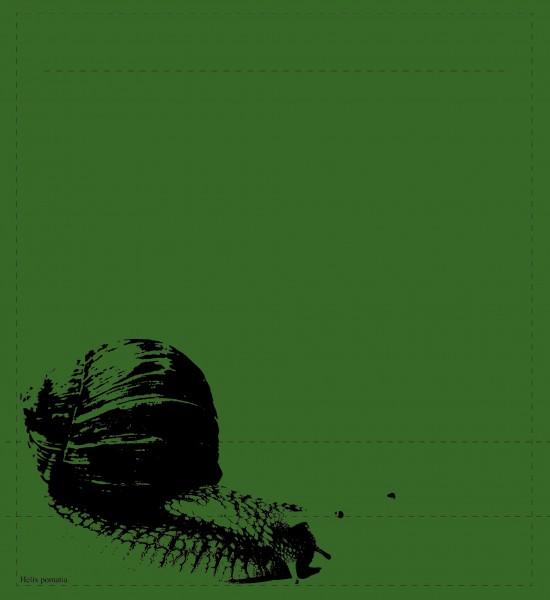 Wechselhülle für Tasche - Helix Pomatia - grün/schwarz - Größe M