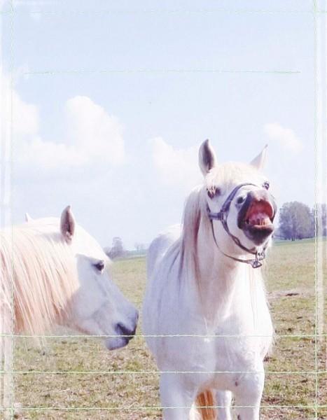 Deckel S - Pferde